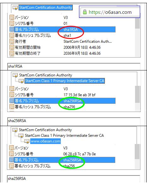 Windows10 x64 上の Chrome 緑色のカギ