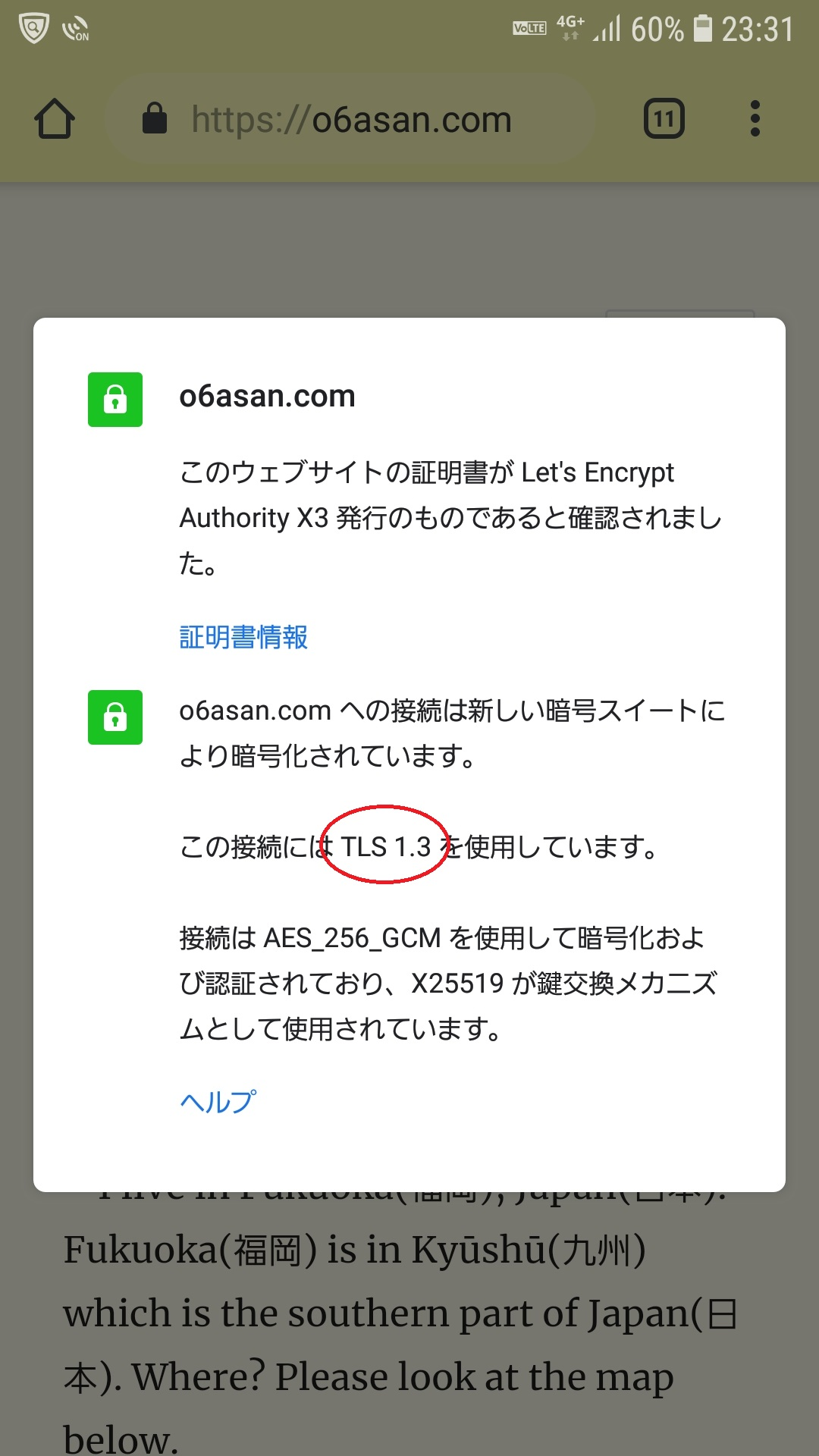 My Web server supports TLSv1 3 now  – o6asan's soliloquy
